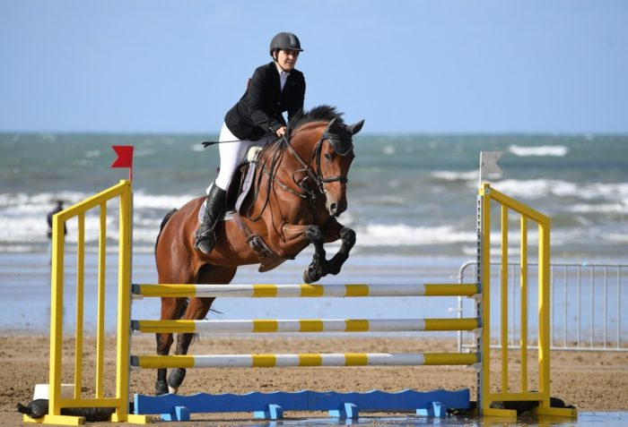 How to use Seaver jumping data in over-fences schooling
