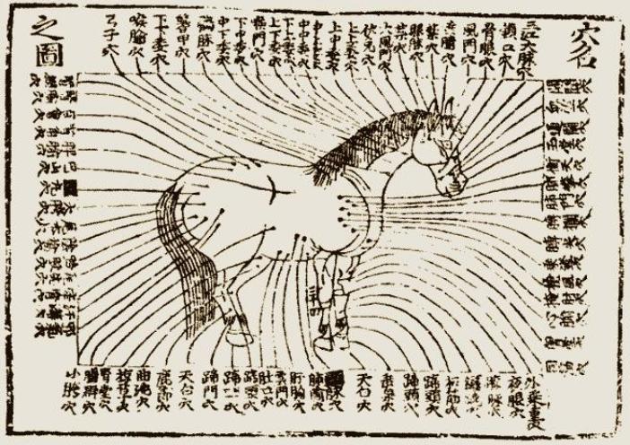 Ma Niu I Fang, année 1399