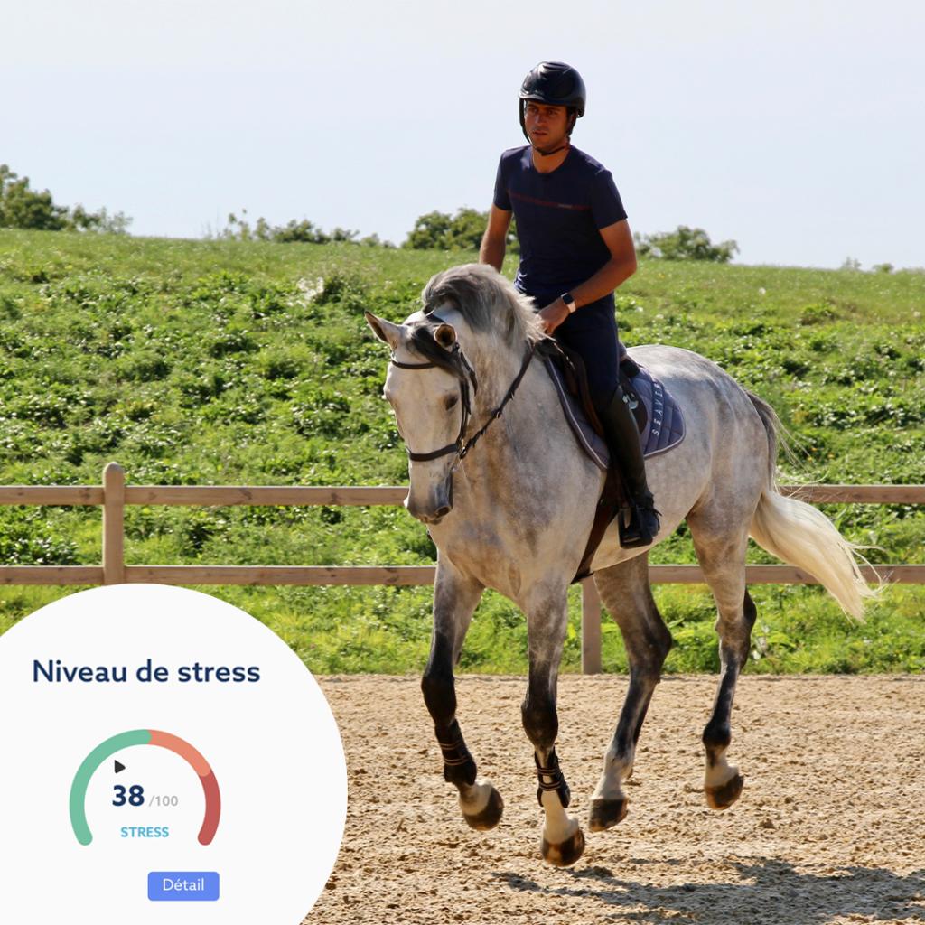 Obtenez le niveau de stress de votre cheval grâce au CEEFIT Pulse & ECG et à Santé+.