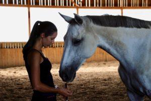 il faut de la patience et beaucoup de travail pour créer un lien fort avec son cheval